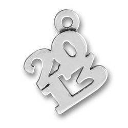 Sterling Silver 2013 Charm